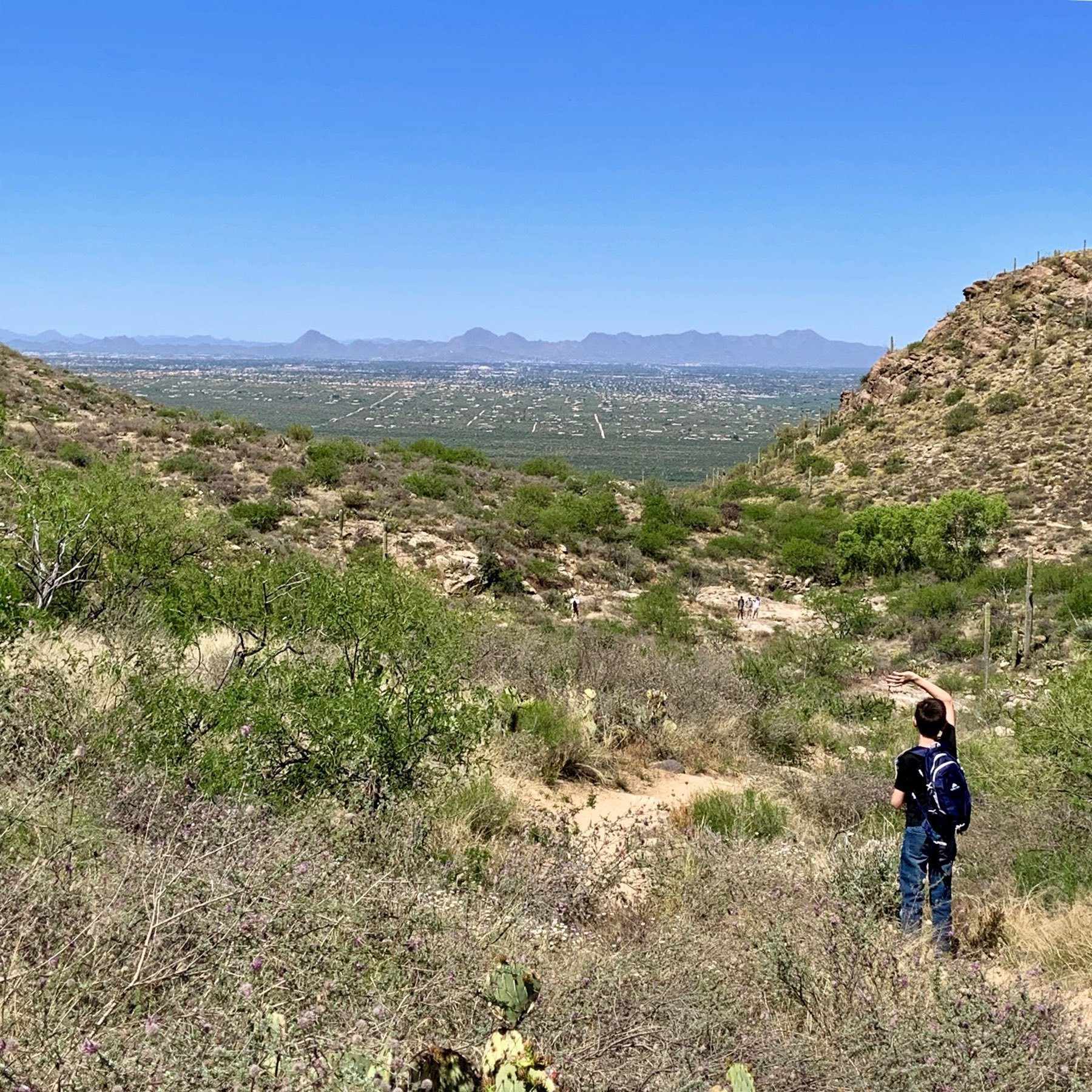 a view of Tucson looking from the mountains in the east