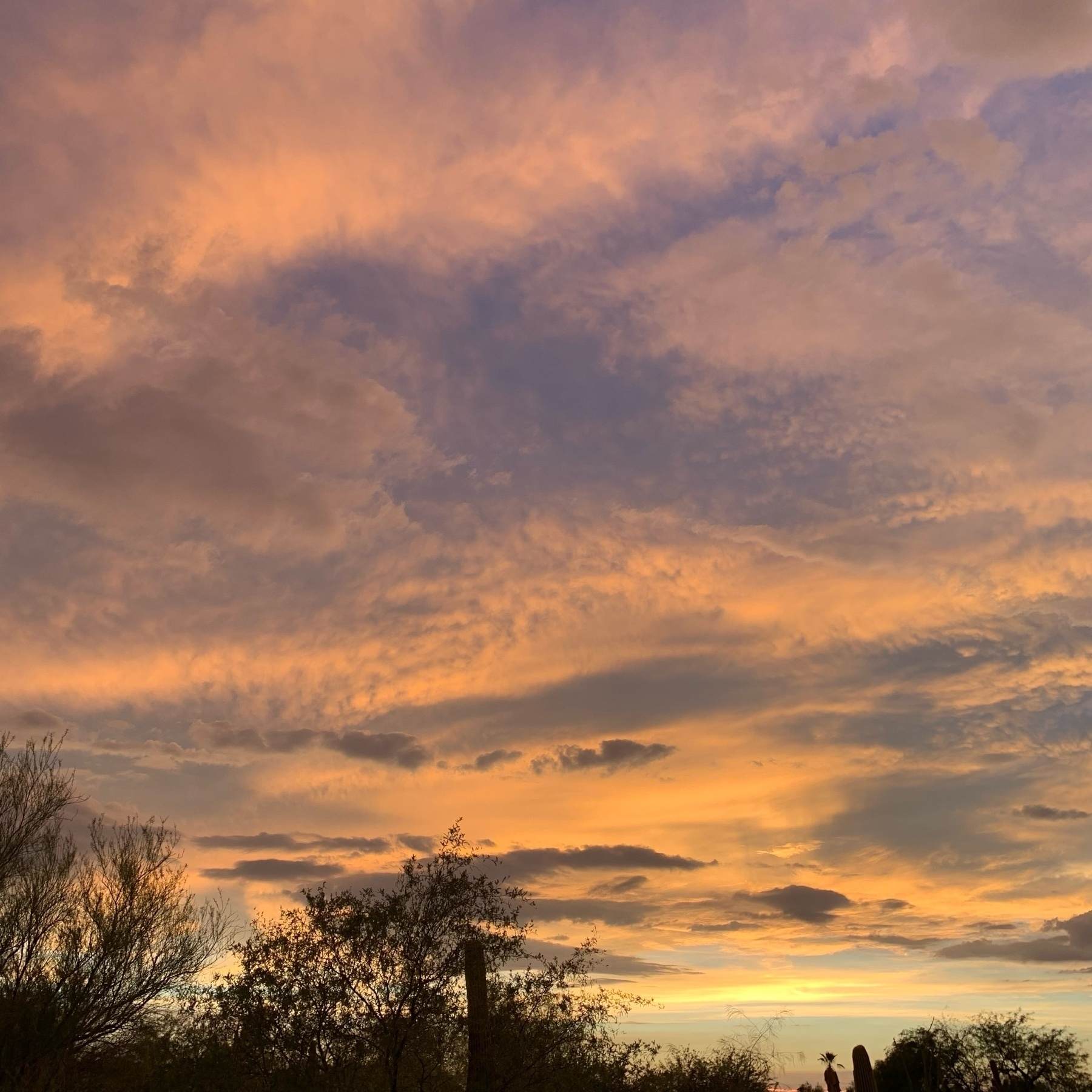 July sunset in Tucson